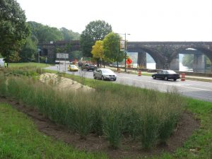 Photo Credit: Green Infrastructure