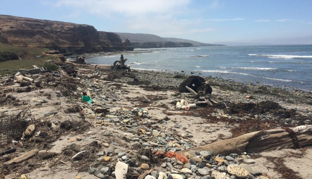 Plastic Pollution on Tecelote Beach on Santa Rosa Island; photo credit Michaela Miler